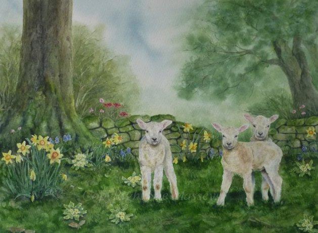 Spring Lambs.. Original art by Sue Massey