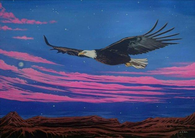 Night flight. Original art by Zoe Adams