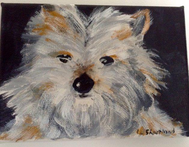 Scruffy. Original art by Irene Shortland