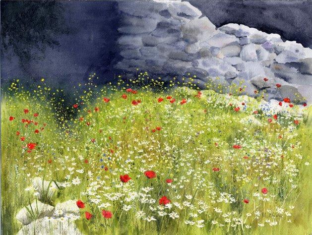 Wild Flowers, Greece. Original art by Mair Oliver