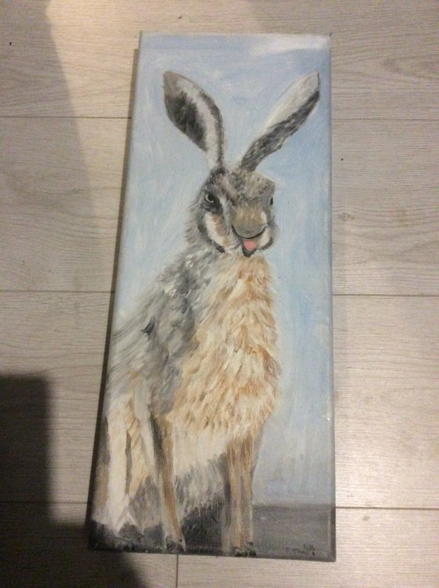 Hare. Original art by Judy Johnstone
