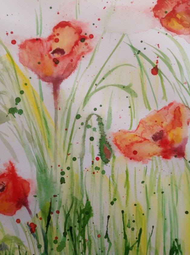 Poppies. Original art by Sue Hodgson