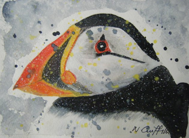 Puffin Head. Original art by Nikki Griffith