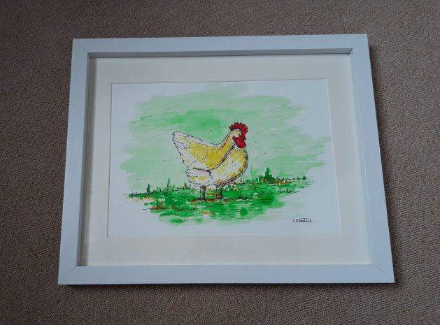 Hen Study. Original art by Sarah Dodd