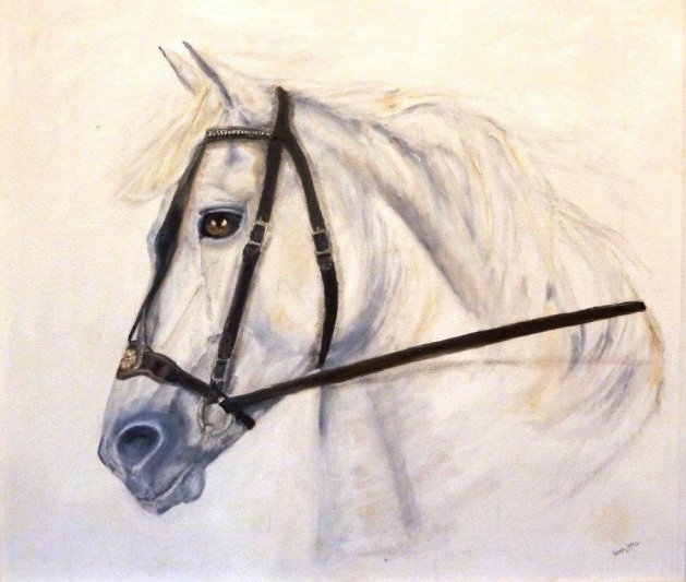 The Andalusian. Original art by Sarah Green