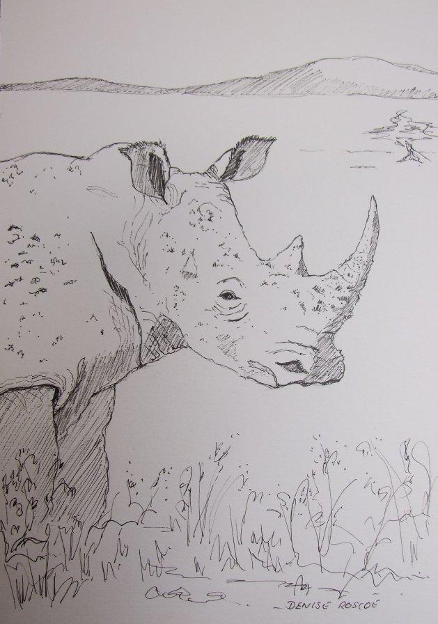 Young rhino. Original art by Denise Roscoe