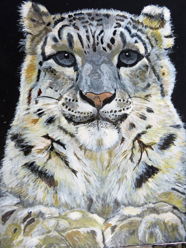 Snow Leopard. Original art by Ros Tyrrell