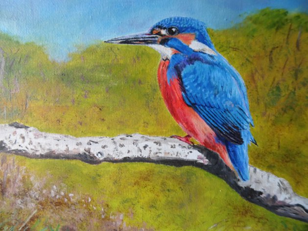 Kingfisher. Original art by Philip Smith