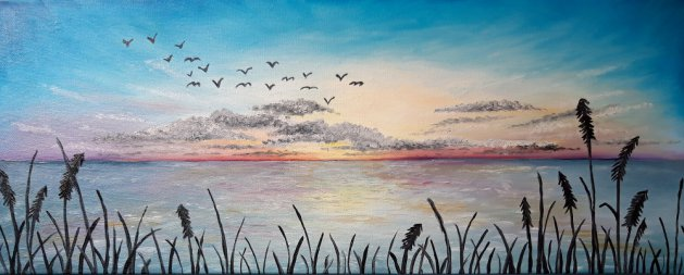 Flying by…. Original art by Sarah Dodd