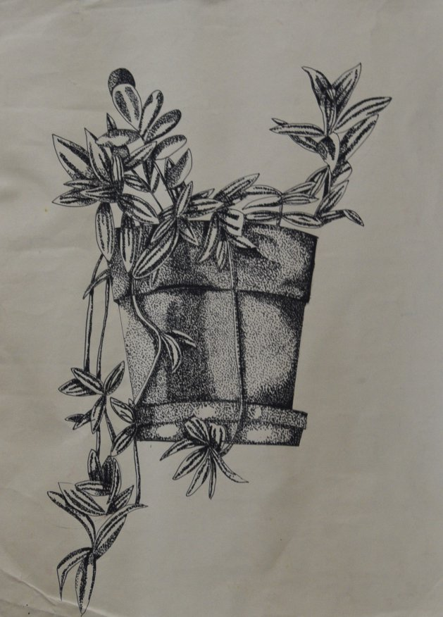 Trailing plant in vase. Original art by Kelly Litherland