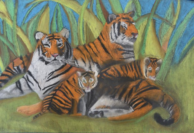 Streak of Tigers in Pastel. Original art by Kelly Litherland
