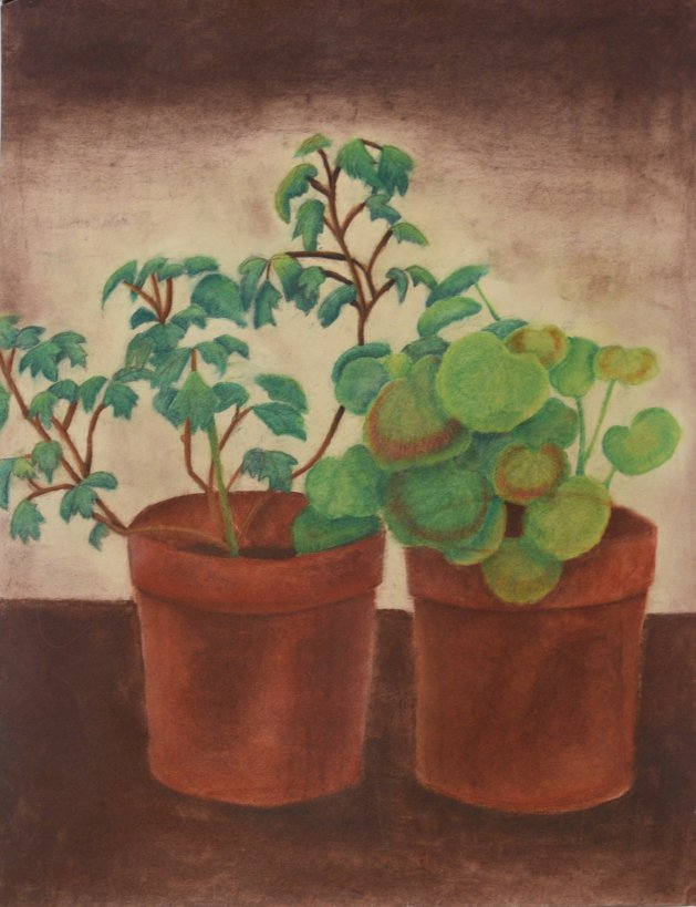 Plants in terracotta pots in pastel. Original art by Kelly Litherland
