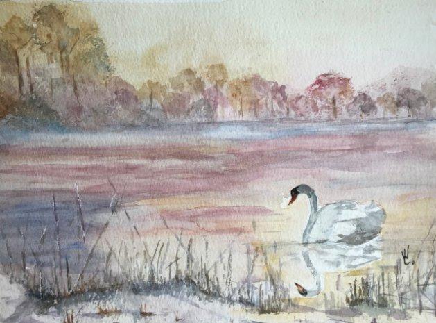 The Avon Swan. Original art by Wendy Lloyd
