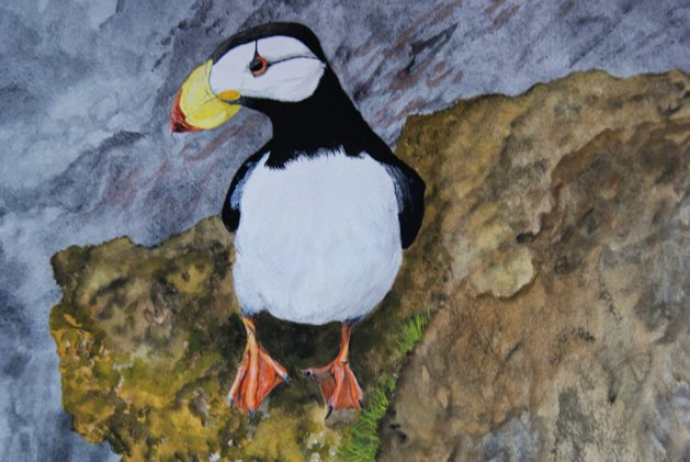 Puffin. Original art by Janet Blower