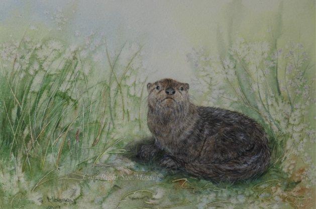 Little Otter.. Original art by Sue Massey