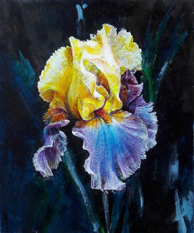 Iris Flower. Original art by George Ganciu