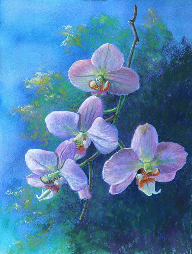 Pink Orchids. Original art by Christine Derrick