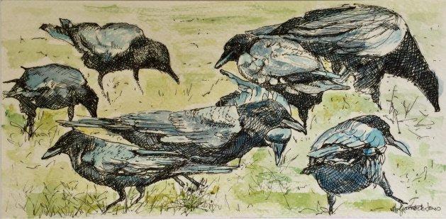 Ravens. Original art by Hilary Garnock-Jones
