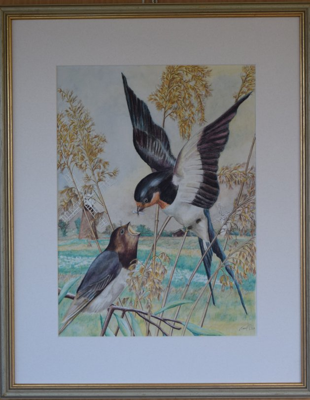 Swallows over St Benet's Marshes. Original art by Anthony Rose