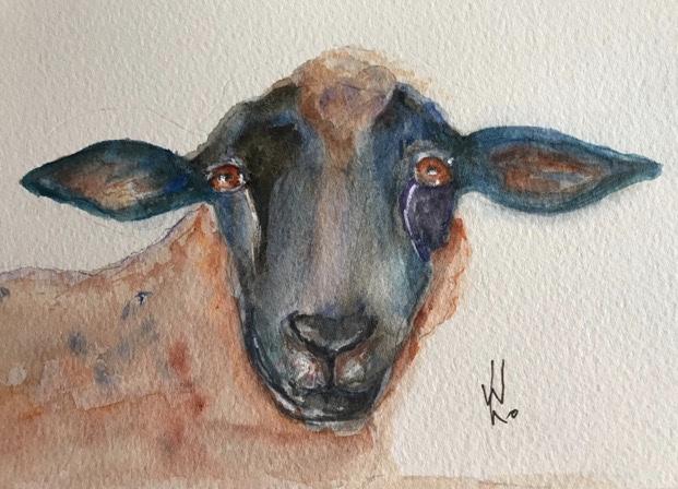 A quirky sheep. Original art by Wendy Lloyd