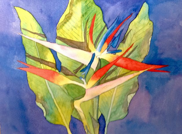 Bird of Paradise flower. Original art by Beryl Walker