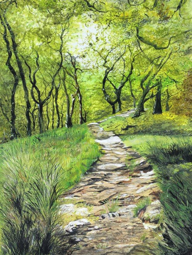 Dolgoch woods in Wales. Original art by Janet Blower