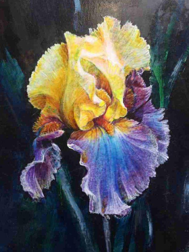 Iris. Original art by George Ganciu