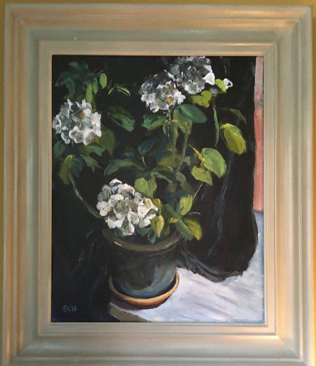 Hydrangeas. Original art by Sarah Nesbitt