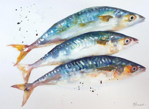Three Mackerel Fish. Original art by Teresa Tanner