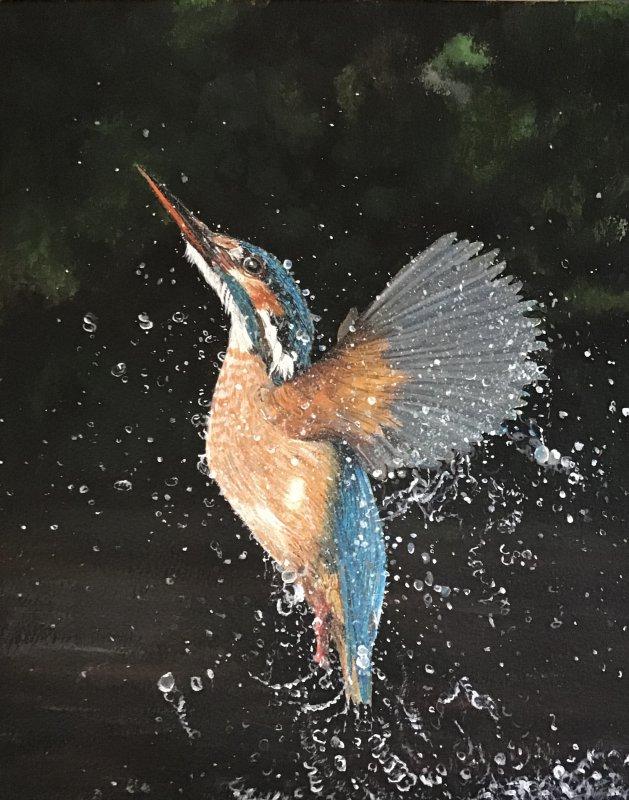 Kingfisher. Original art by Janet Blower
