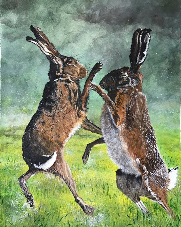 Boxing hares. Original art by Janet Blower