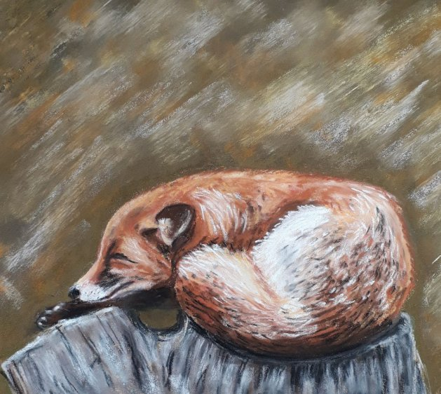 Sleepy fox. Original art by Jackie Marsh