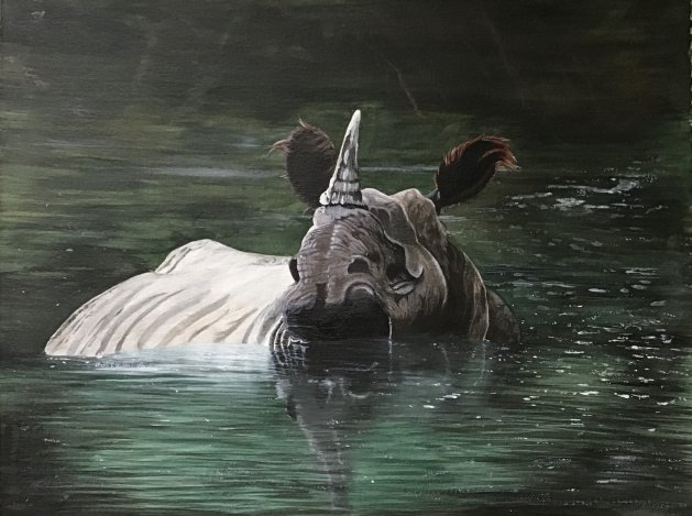 Rhino in lake. Original art by Janet Blower