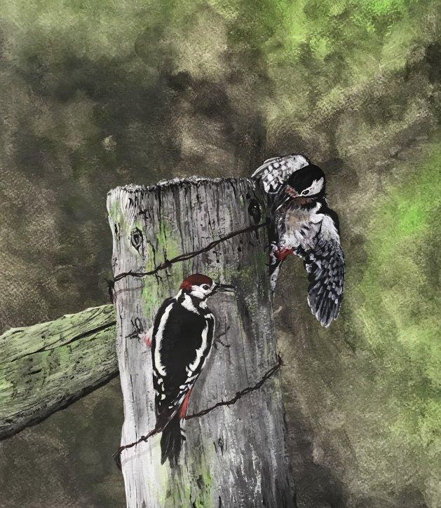 Woodpeckers. Original art by Janet Blower