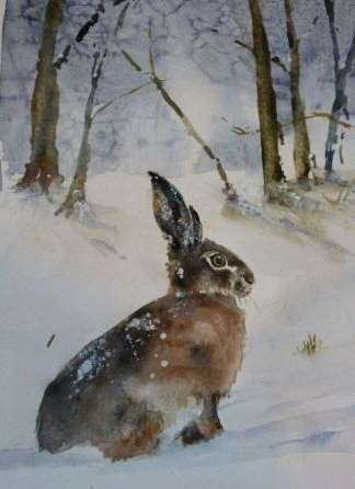 Hare in Snow. Original art by Heather Roll