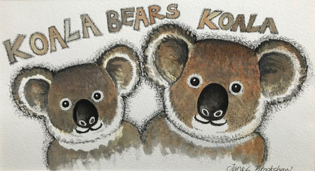 Koala Bears. Original art by Jane Brookshaw