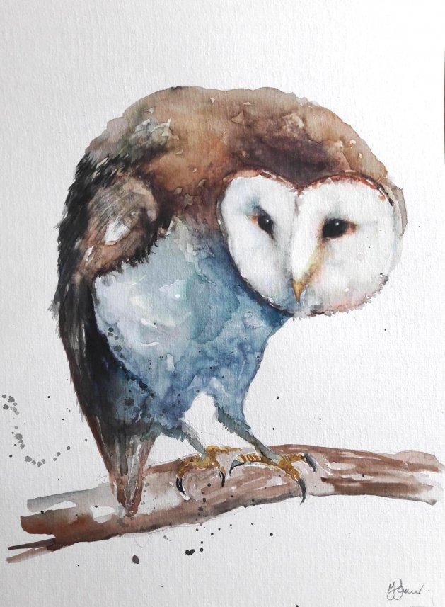 Barn Owl. Original art by Teresa Tanner