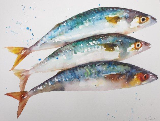 Three Mackerel. Original art by Teresa Tanner