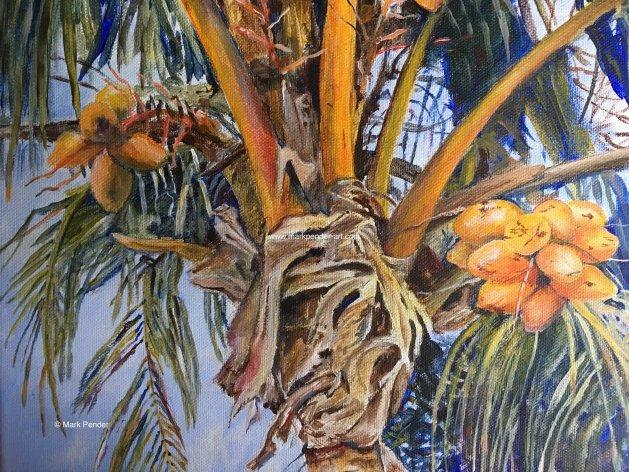 Florida Coconuts. Original art by Mark Pender