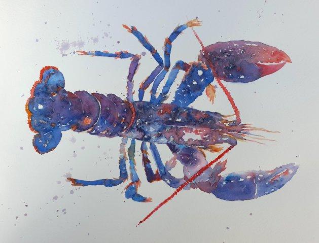 Lobster. Original art by Teresa Tanner
