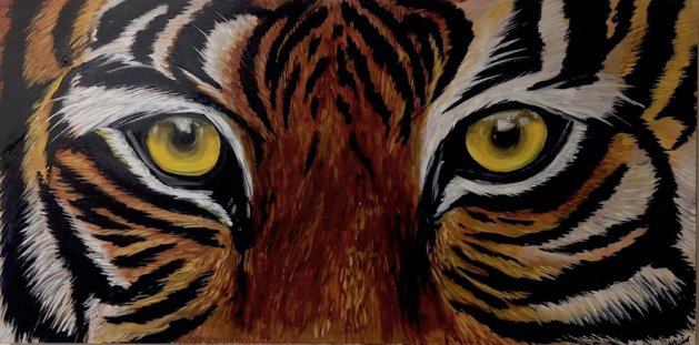 Tiger Eyes. Original art by Aisha Haider