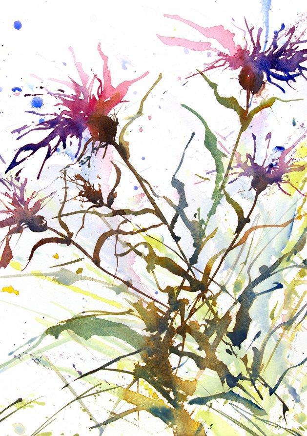 Purple Cornflowers #2. Original art by Adrian Homersham