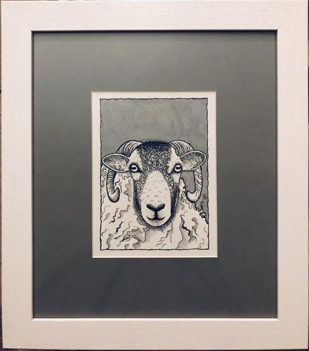 Swaledale Ram. Original art by Jane Brookshaw