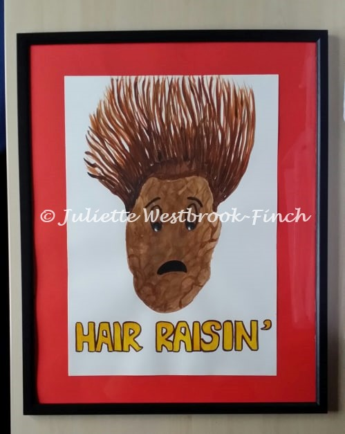 HAIR RAISIN' (Framed Original). Original art by Juliette Westbrook-Finch