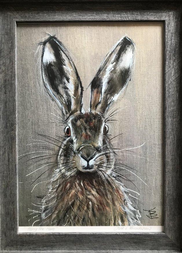 Harry the Hare. Original art by Jane Brookshaw
