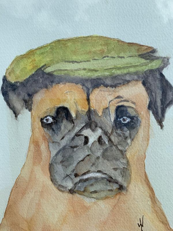A Pug dog. Original art by Wendy Lloyd