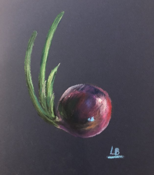 Sprouted Red Onion - Original Oil Pastel. Original art by Lucy Beevor