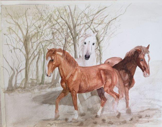 Wild horses. Original art by Denny Aitch