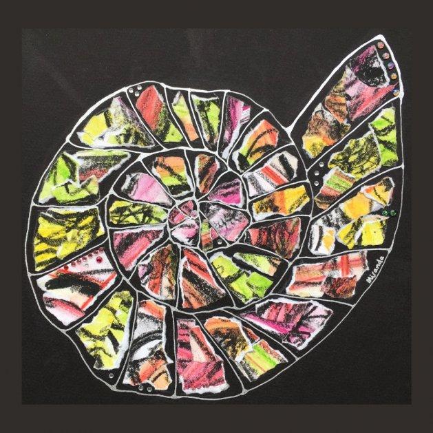 Ammonite: Allsorts. Original art by Miranda Pender
