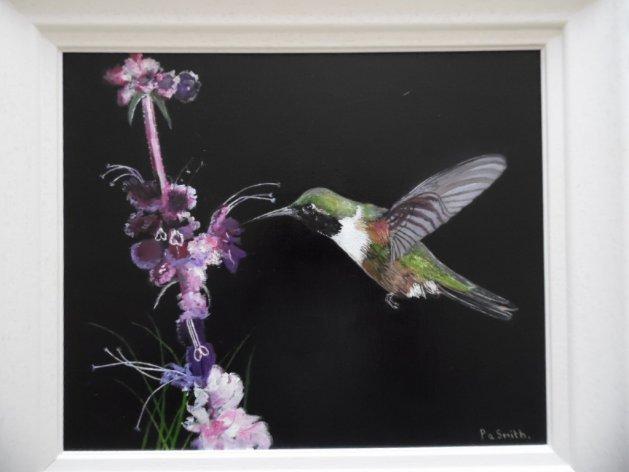 Humming bird. Original art by Philip Smith